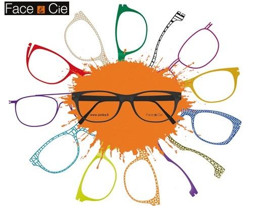 7664613db Face & Cie jsou přizpůsobitelné francouzské brýle. Mají vyměnitelné klipy  na očnice z nerezové titadur a pružnost tohoto materiálu usnadňuje snadnou  ...